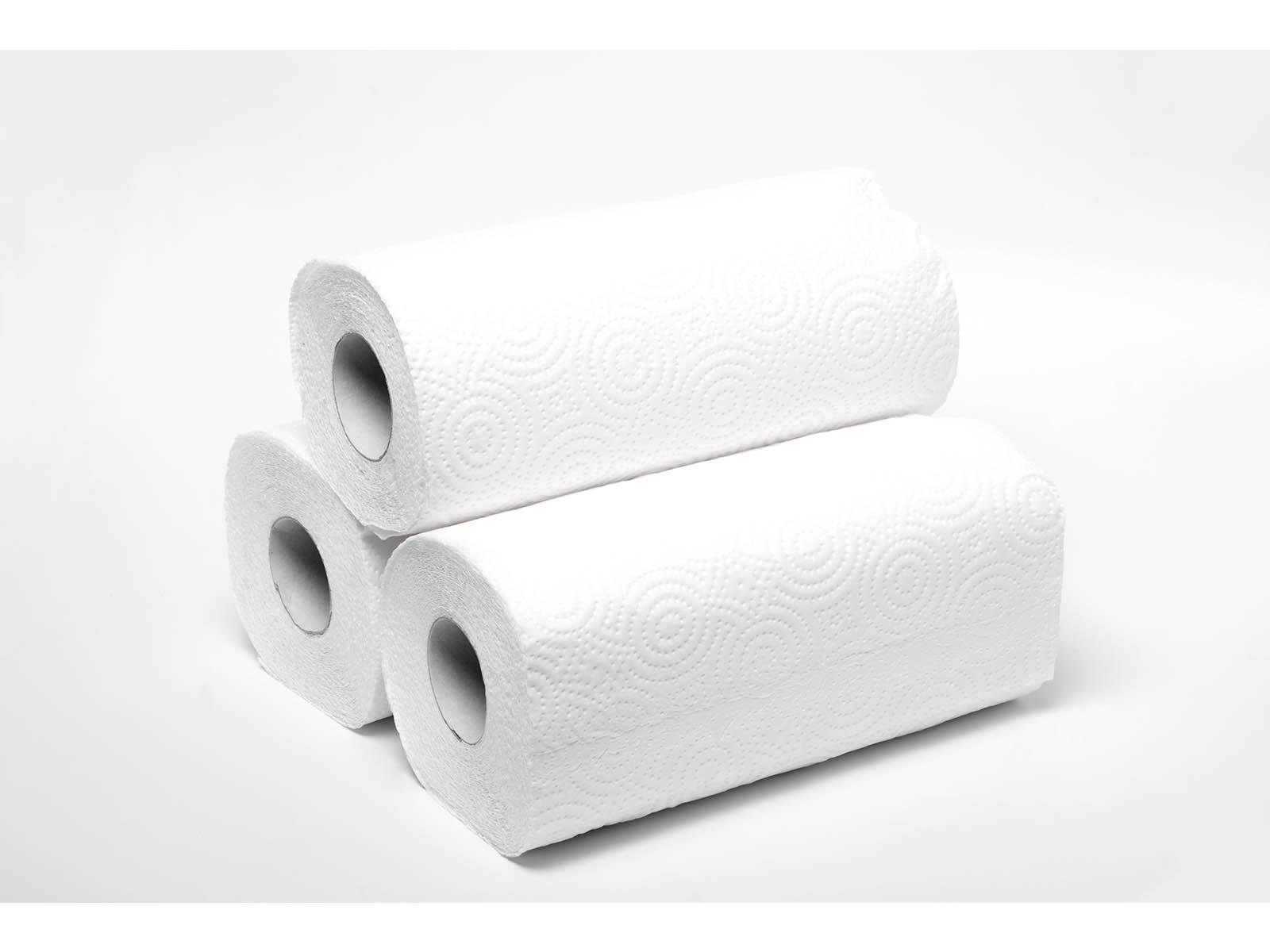 Edson Paper Towels 1